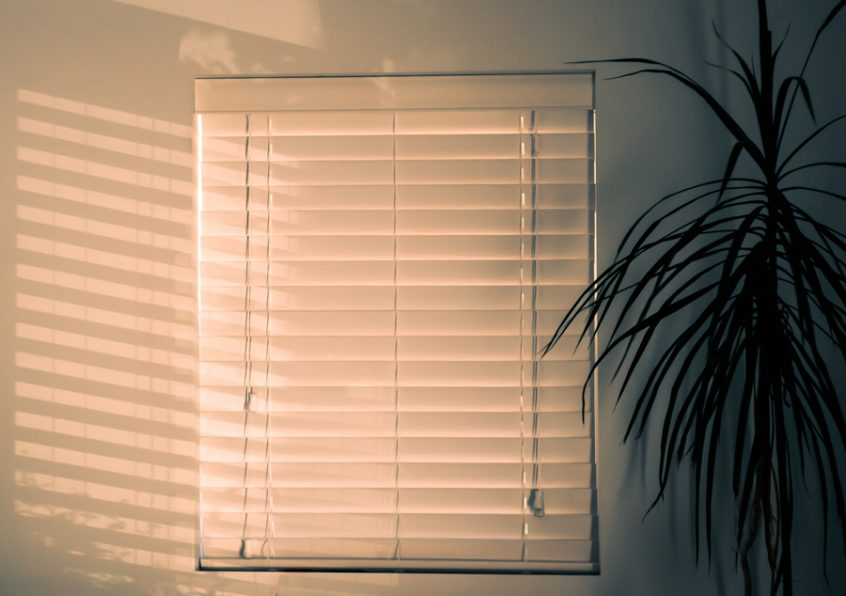 blinds sugar city